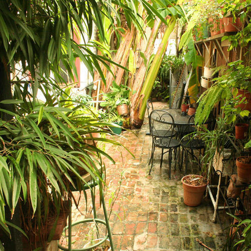 1870 Banana Courtyard French Quarter/New Orleans B&B
